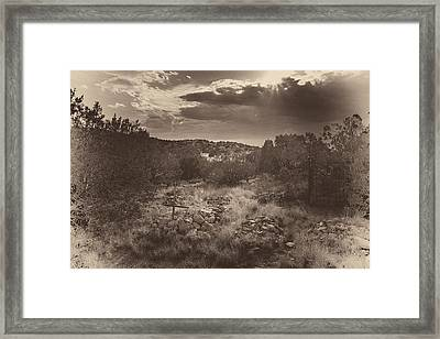 Shine On Framed Print