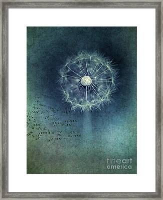Shine Framed Print by Priska Wettstein