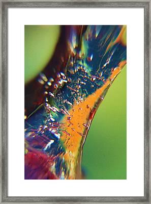 Shine Through Framed Print
