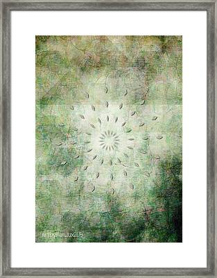 Shine Your Light Framed Print by Mimulux patricia no No