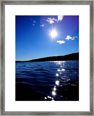 Shiner Framed Print by Andrea Galiffi
