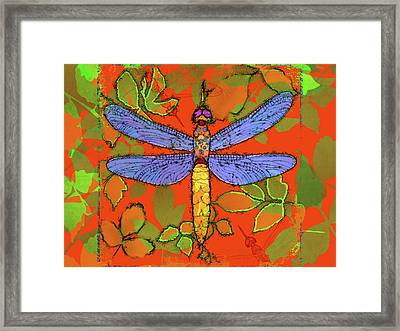 Shining Dragonfly Framed Print by Mary Ogle