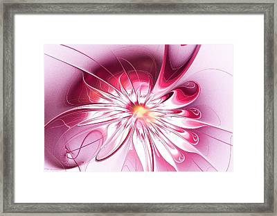 Shining Pink Flower Framed Print