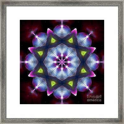 Shining Star Mandala Framed Print by Yulia Kazansky