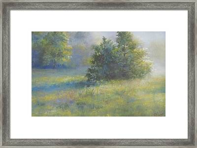 Shining Through Framed Print