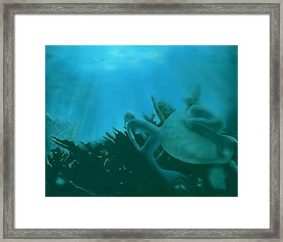 Ship Wreck Framed Print by Charles Parks
