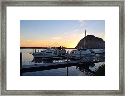 Yachts Framed Print by Janet Darling