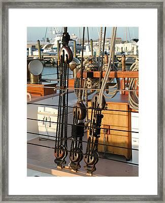 Ship's Rigging Framed Print by Nancy Taylor