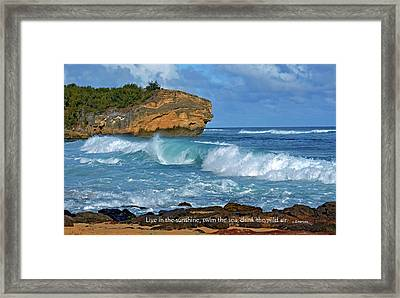 Shipwreck Beach Shorebreaks 2 Framed Print