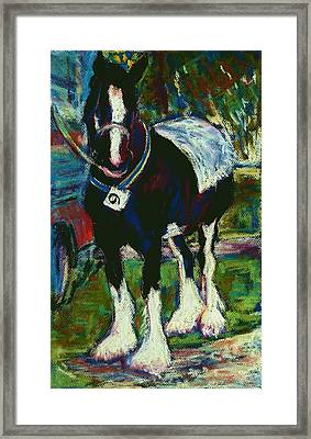Shire Horse At Abergavenny Rally Framed Print by Judy Adamson