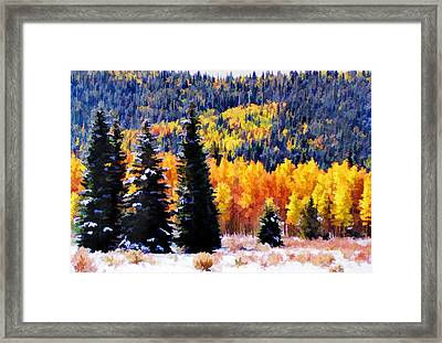 Framed Print featuring the photograph Shivering Pines In Autumn by Diane Alexander
