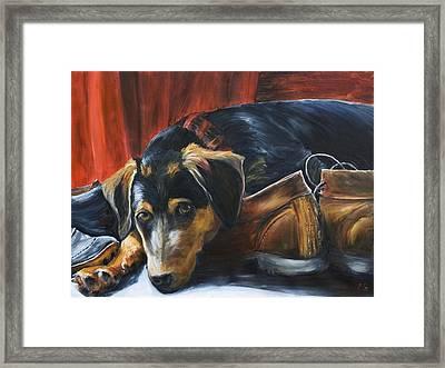 Shoe Dog Framed Print by Nik Helbig