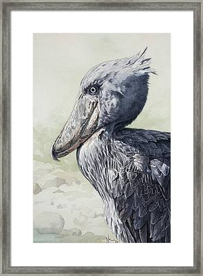 Shoebill Stork Portrait Framed Print by Emmanuel De Guzman