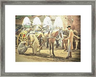 Shoeing The Horse  Framed Print