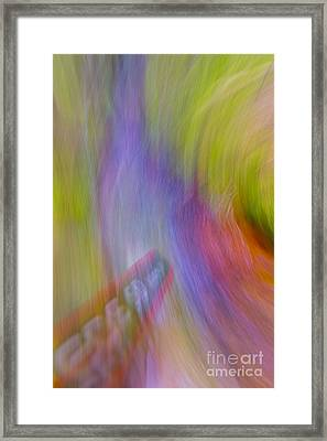 Shoot And Swing Framed Print by Veikko Suikkanen