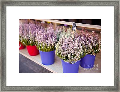 Shop Stillage With Pink Heather Flowers  Framed Print by Arletta Cwalina