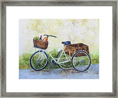 Shopping Day In Lucca Italy Framed Print by Bonnie Rinier