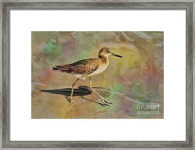 Framed Print featuring the painting Shore Bird Beauty by Deborah Benoit