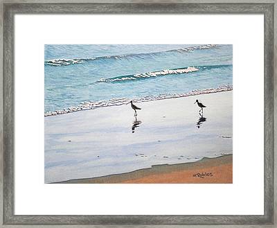 Shore Birds Framed Print by Mike Robles