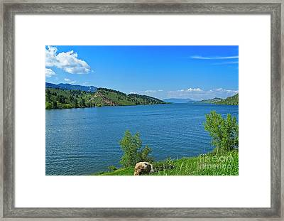 Shore Leave Framed Print