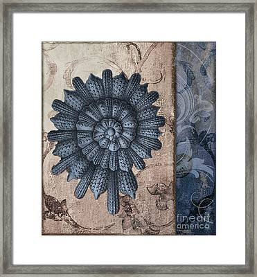 Shore Lines Beach Nautilus Shell II Framed Print