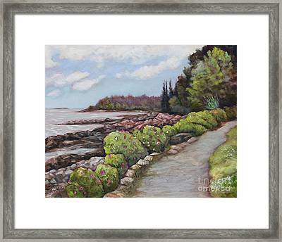 Shore Path Framed Print by Eve  Wheeler