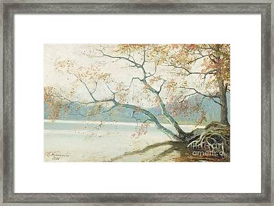 Shore Tree Framed Print by Celestial Images