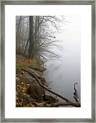 Framed Print featuring the photograph Shoreline by Alan Raasch