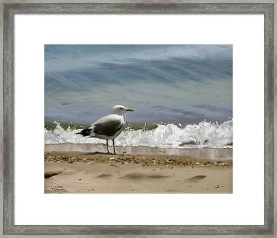 Shoreline Breeze Framed Print by Linda Tenukas