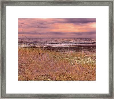 Shores Of Life Framed Print