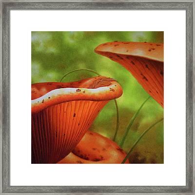 Shortcut To Mushrooms Framed Print