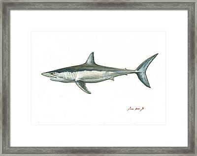 Shortfin Mako Shark Framed Print