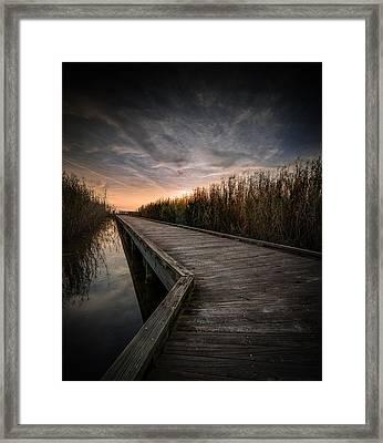 Shoveler Boardwalk Framed Print