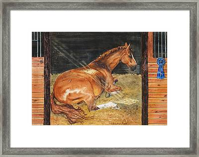 Show Day Nap Framed Print by Kristine Plum