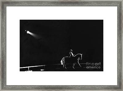 Show Horse Framed Print by Jim Wright