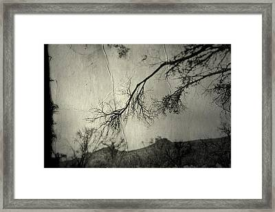 Framed Print featuring the photograph Show Me  by Mark Ross