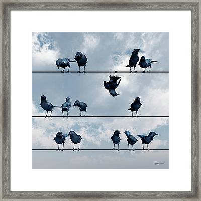 Show Off Framed Print by Cynthia Decker
