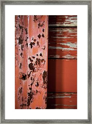 Showing Age Framed Print by Karol Livote