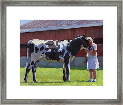 Showing The Heifer Framed Print