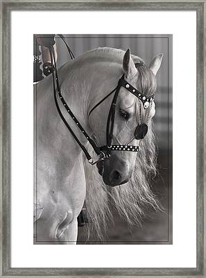 Showtime Framed Print by Wes and Dotty Weber