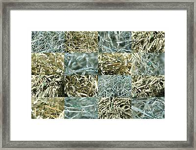 Shredded Money Framed Print