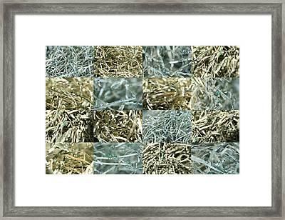 Shredded Money Framed Print by Robert Glover