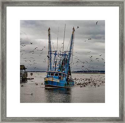 Shrimp Boat Seahorse Framed Print by Capt Gerry Hare