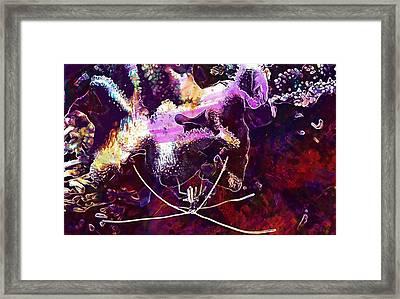 Shrimp Coral Plankton Sea Ocean  Framed Print