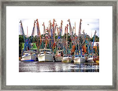 Shrimp Fleet Framed Print
