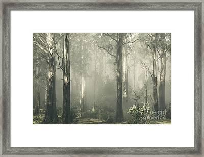 Shroud Framed Print