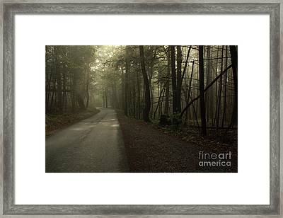 Shrouded Path Framed Print by J L  Gould