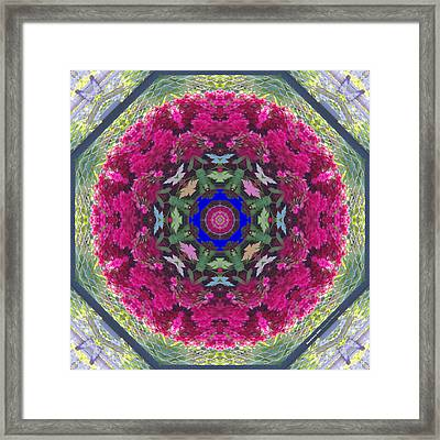 Shrubbery 2921 Framed Print by Brian Gryphon