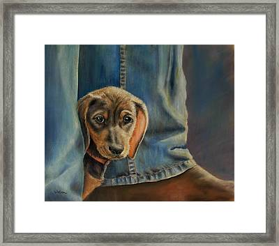 Shy Boy Framed Print