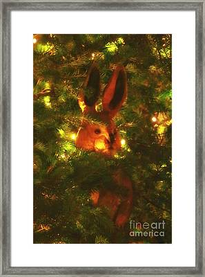 Shy Jack Rabbit  Framed Print by Elizabeth Dow